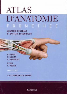Anatomie générale et système locomoteur