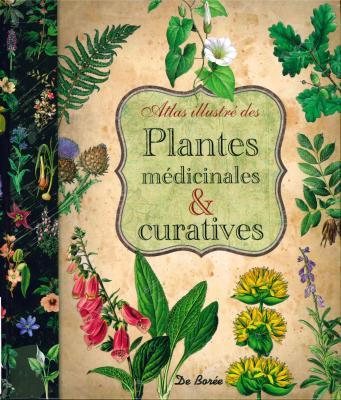 Plantes médicinales et curatives